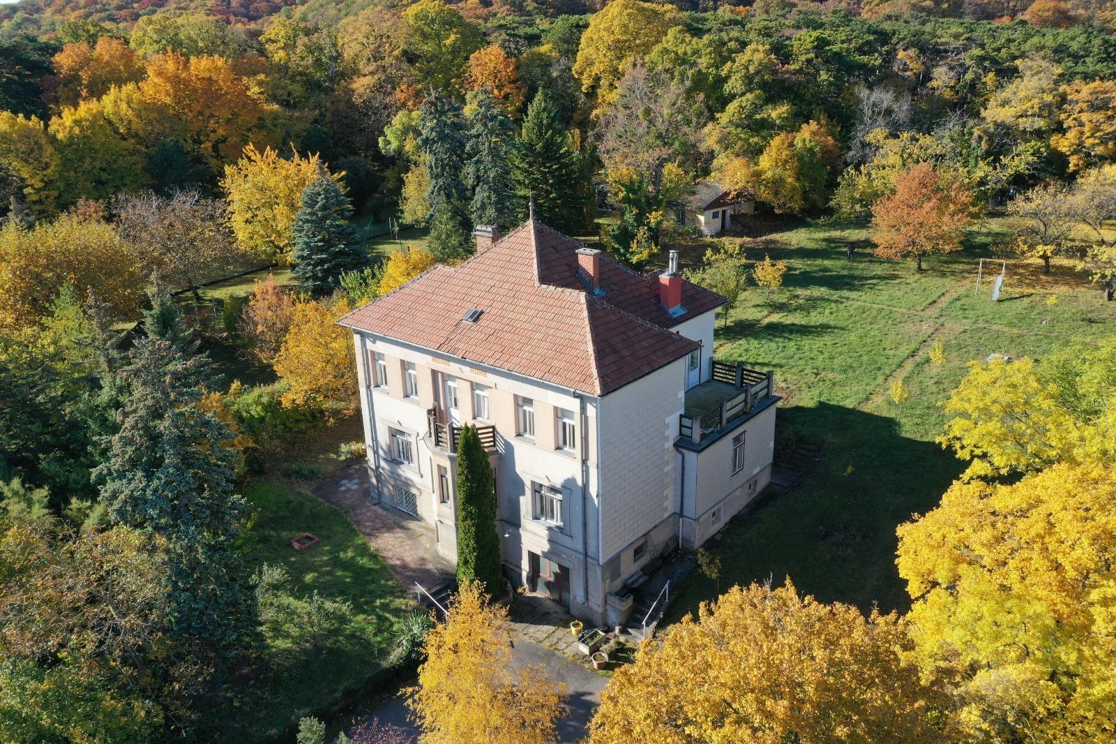 Traumhaftes Grundstück mit alter Villa